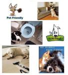 Pet-Friendly-Page.jpg