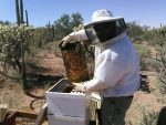 Chris Local beekeeper.jpg