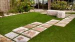 grass1.jpg